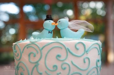 CLP_cake2