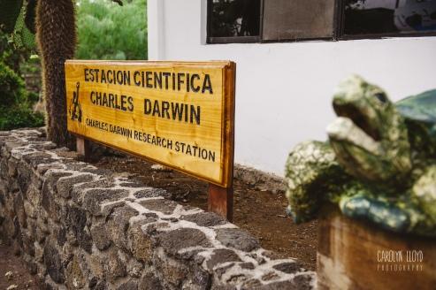 CLP_Darwin