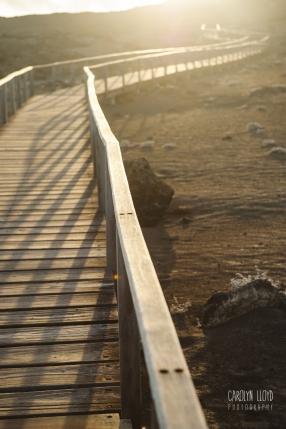 CLP_walkway